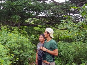 TCS Students Survey Agroforestry Plot