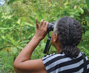 Narcisa Puertas in birdwatching workshop