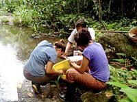 Water Quality Internship