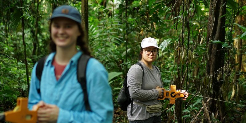diversity scholarship tropical study abroad